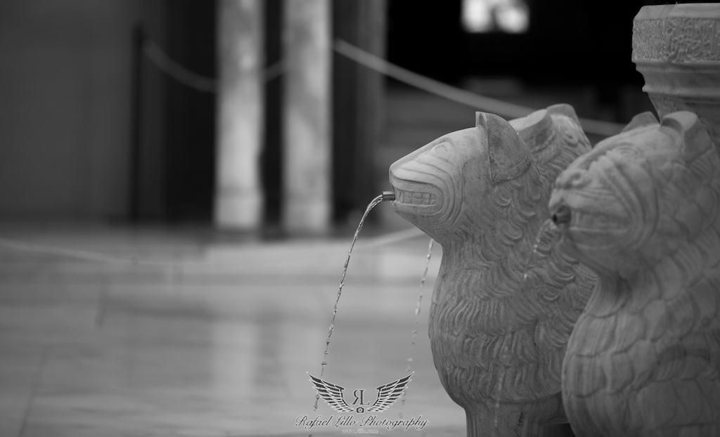 Rafael Lillo Fotografía -alhambra-79